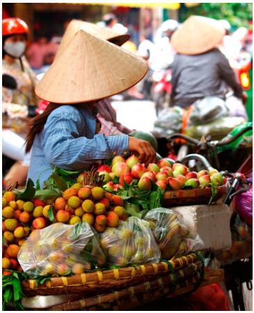 Southern China and Vietnam 2