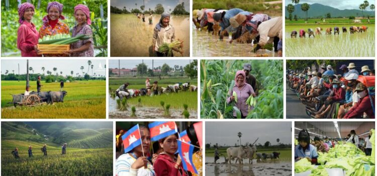 Covid-19 and Cambodia Economy
